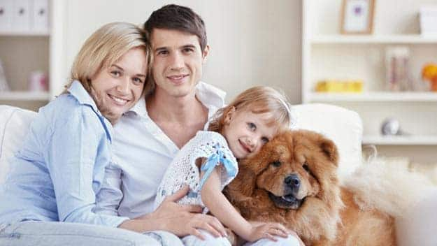 Wills & Trusts dog-young-family Direct Wills Sutton